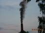 Tak dymił Alcor, 2007
