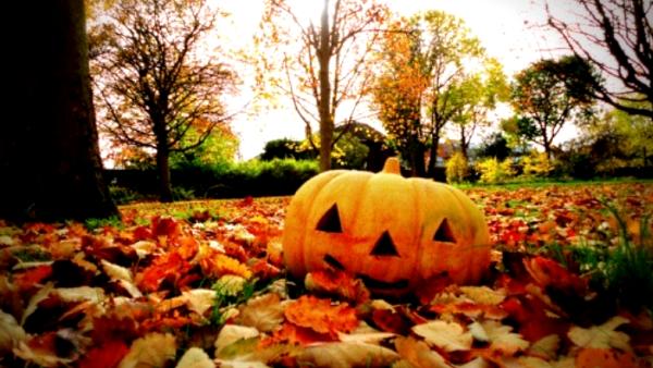 halloween_krzeszowice