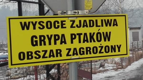 Część gminy w obszarze zagrożonym ptasią grypą