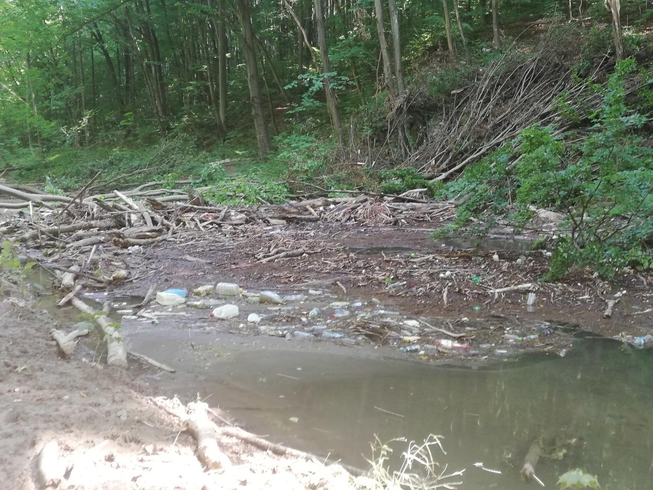 Śmieci w Dolinie Racławki Fot. czytelniczka